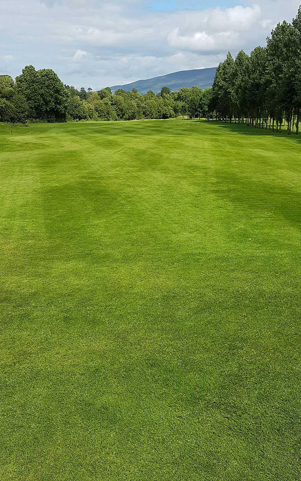 Slievenamon Golf Club 7th Fairway